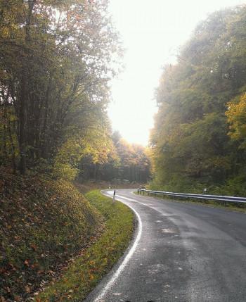 Straße von Kelberg nach Bongard kurz vor dem Spitzen Kreuz; ?>