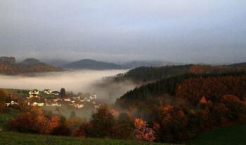 Trittscheid im Nebel 2013; ?>