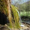 Nohner Wasserfall 2013; ?>