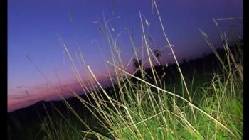 Sonnenuntergang am Eselsberg bei Dockweiler; ?>