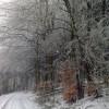 Blick vom Ernstberg in Richtung Waldkönigen, Januar 2014; ?>